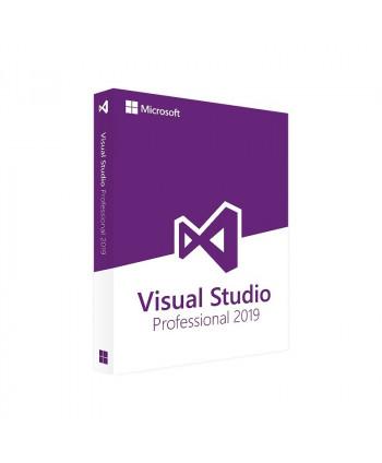Visual Studio 2019 Professionnel (Microsoft)
